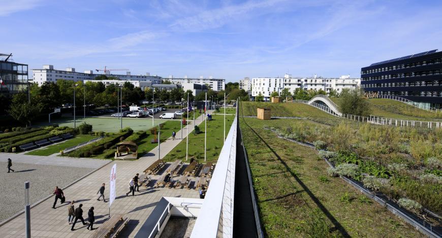 Le site de Bienvenüe de l'université Gustave Eiffel à Champs-sur-Marne abrite certains laboratoires et effectifs de l'université. Il accueille également des équipes du Cerema, du CSTB, de l'École des Ponts ParisTech ainsi que l'École d'urbanisme de Paris