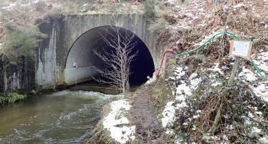 Ouvrage hydraulique instrumenté pour évaluer l'efficacité de son dispositif de franchissement piscicole